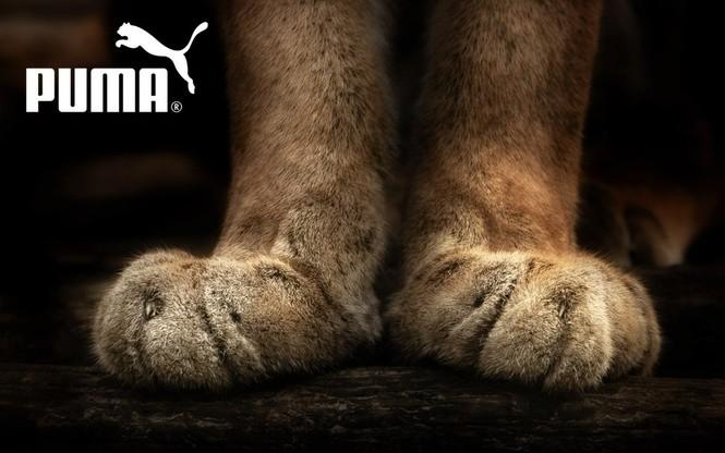Реклама Puma